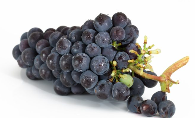 葡萄染~Wild Vine~