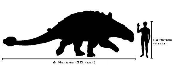 Ankylosaurus。和名、鎧竜。 /月一新曲#4