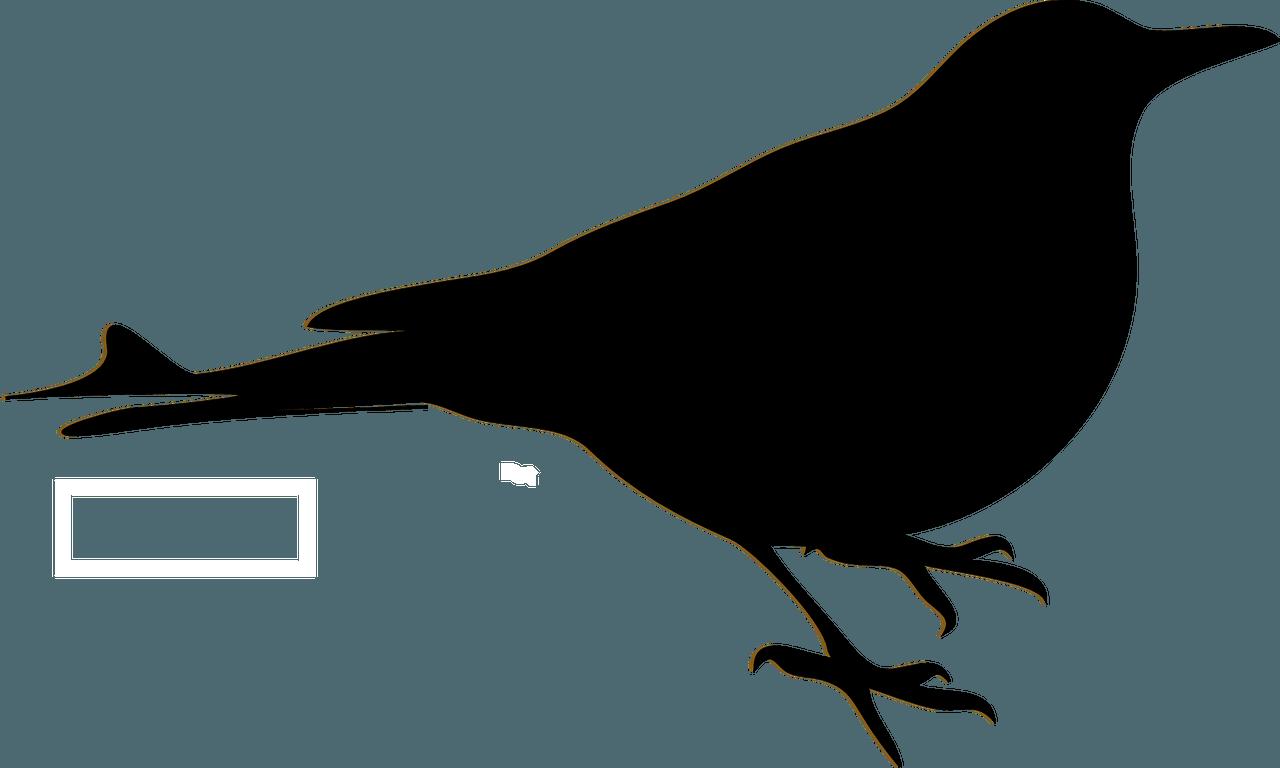 春禽~Nightingale~