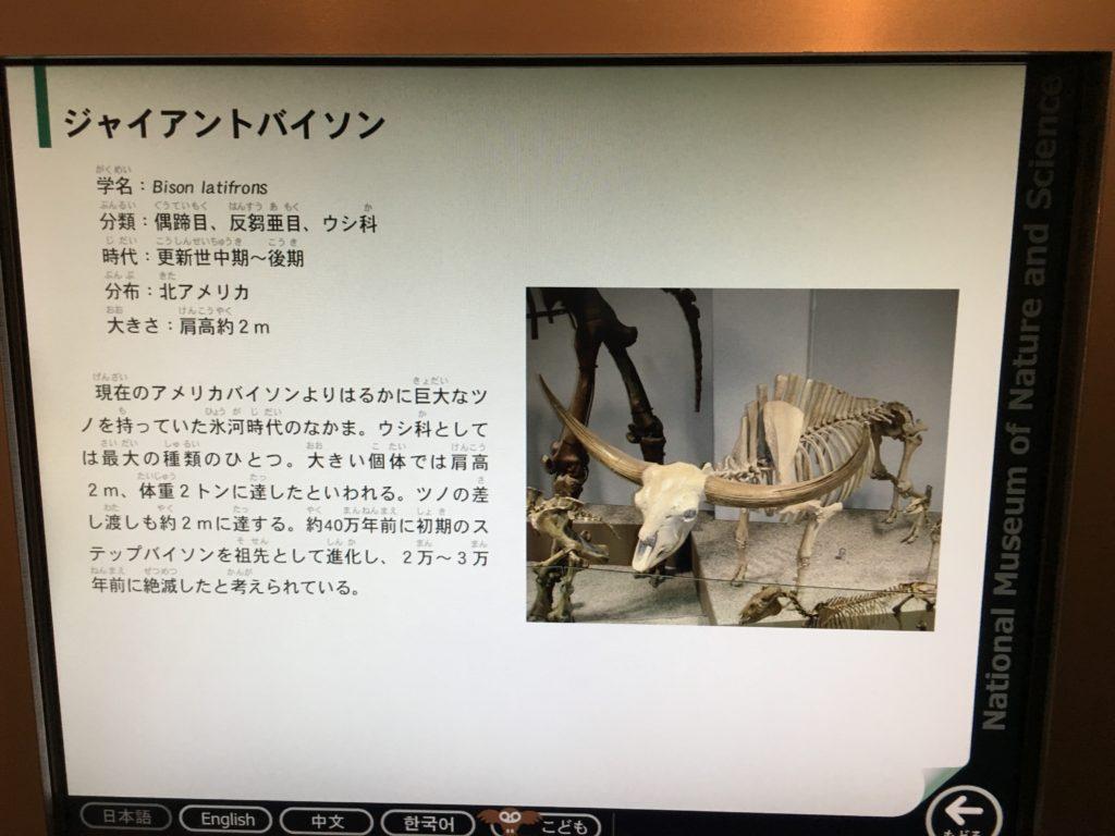 猛牛〜Bison latifrons〜
